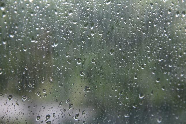 rain-beads-2347518_960_720